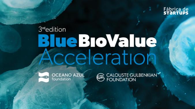 3ª Edição Blue Bio Value